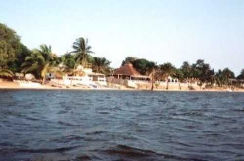 Article : <strong>Drame au Togo: 64 morts et plusieurs blessés</strong>